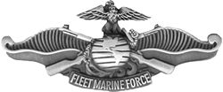 Military Pin: USMC Fleet Marine Frc