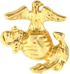 Military Pin: USMC EGA (Rt) Large GL