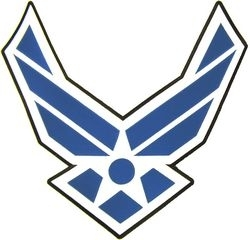 Military Patch: Air Force Wings