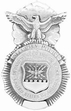 Military Pin: U.S. Air Force Security Police