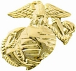 Military Pin: USMC EGA (Lt) Gold