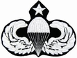 Military Patch: Senior Paratrooper