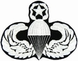 Military Patch: Master Paratrooper