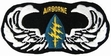 Military Patch: 5th Special Forces A/B Wings