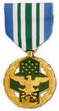 Military Medal: Joint Service Commendation