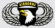 Decals: U.S. Army 101st Airborne Wings